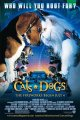 《猫狗大战1-3》下载