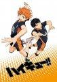 《排球少年1-3季》下载