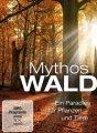 《神话的森林》下载