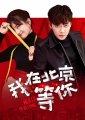 《我在北京等你》下载