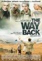 《回来的路》下载
