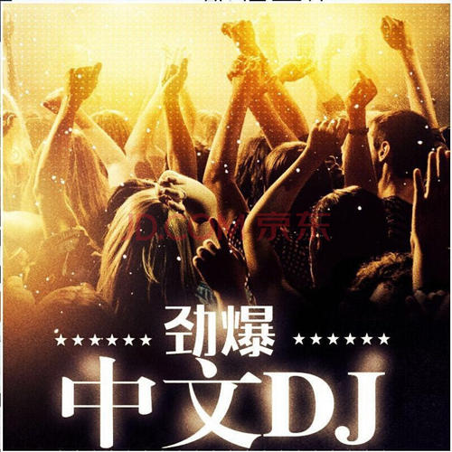 MD1电驾车载抖腿中文DJ高品质MP3合集